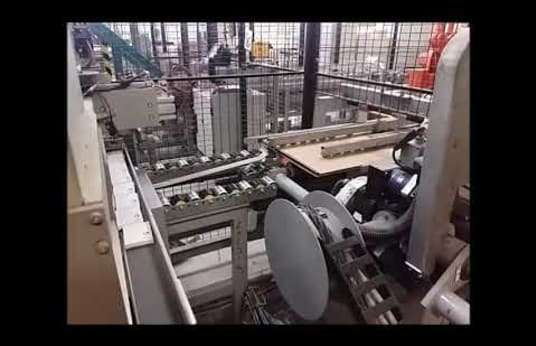 TEAMSTER 0801 Robot Carton Packaging Line